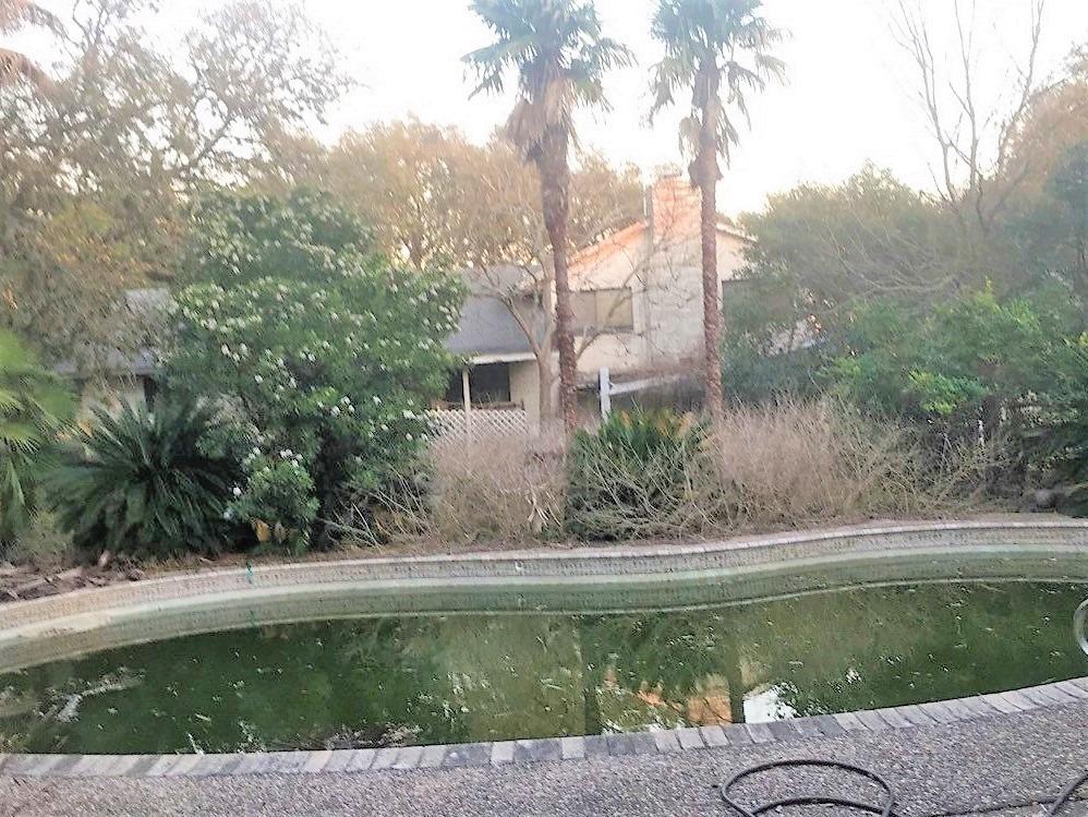 Longoria before our pool remodel